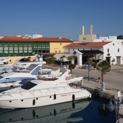 Cafe Calma Limassol