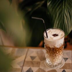 Pingouino Cafe Coffee