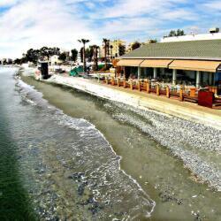 La Isla Resto Beach Bars In Limassol